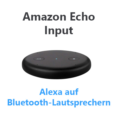 Amazon-Echo-Input